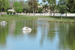Gila Springs Apartments Image