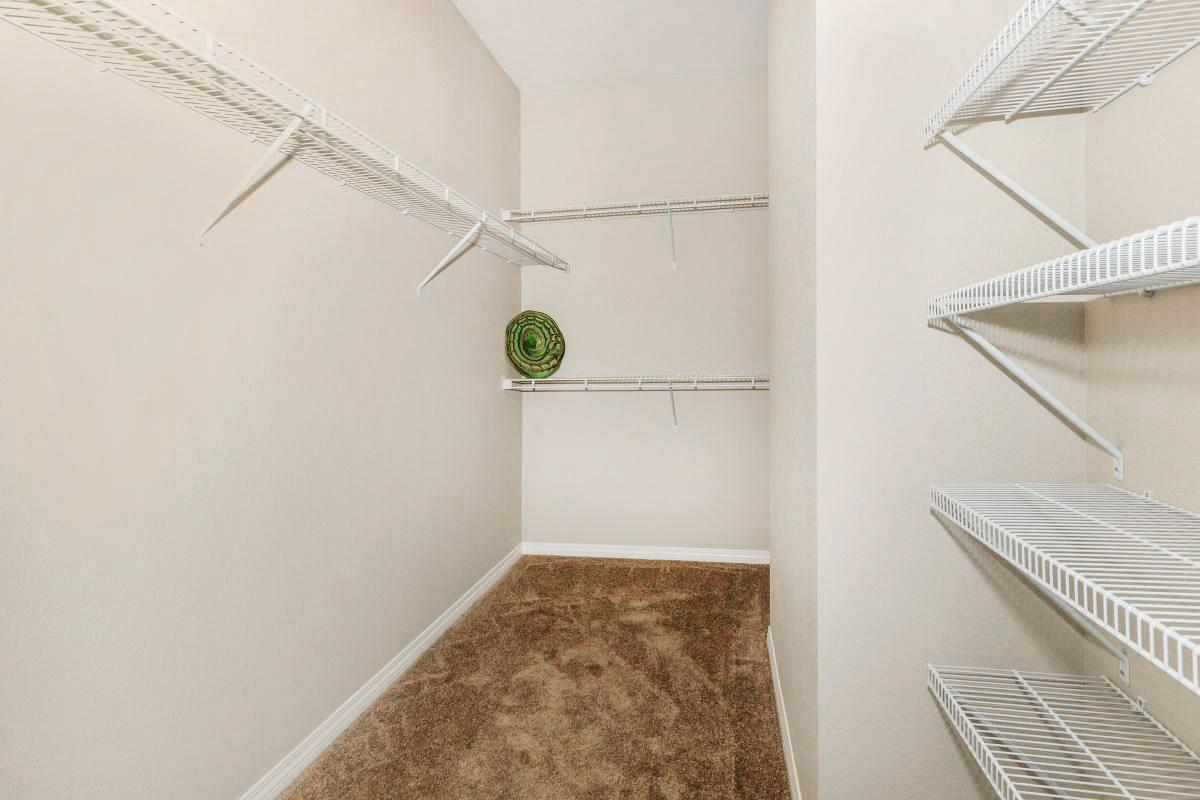 Walk-In Closet with Lots of Storage