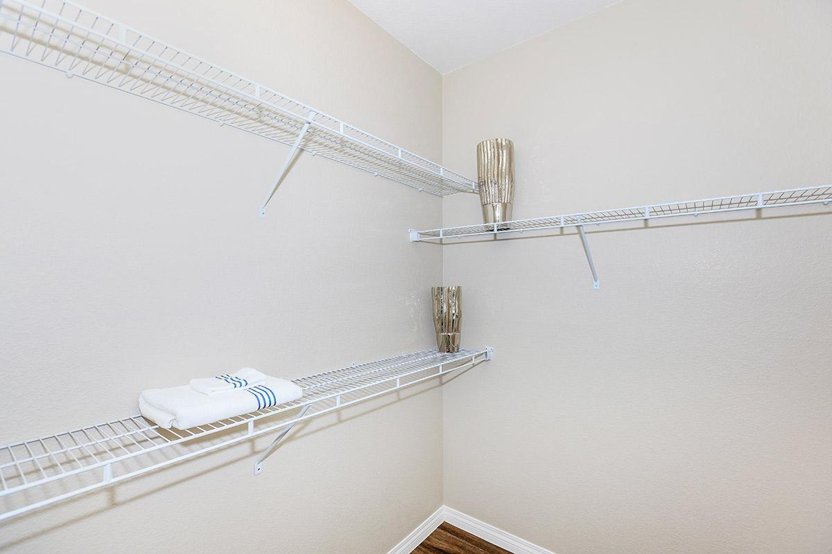 Walk-In Closet with Plenty of Storage