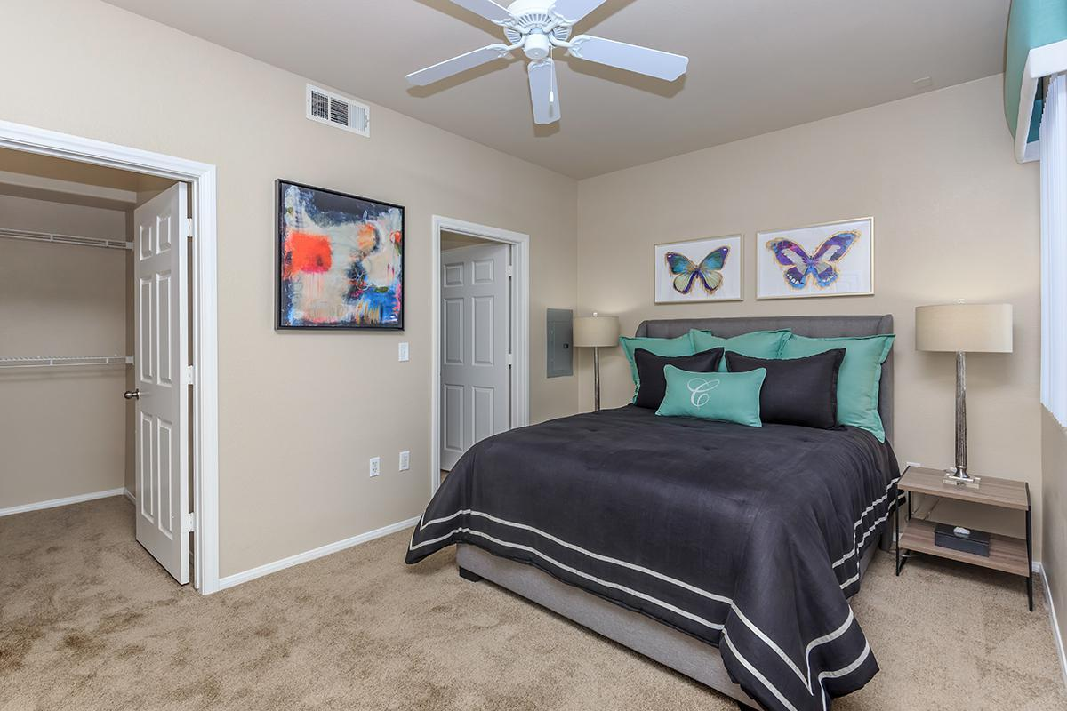 Ceiling Fans, Carpeted Floors, and Walk-in Closets