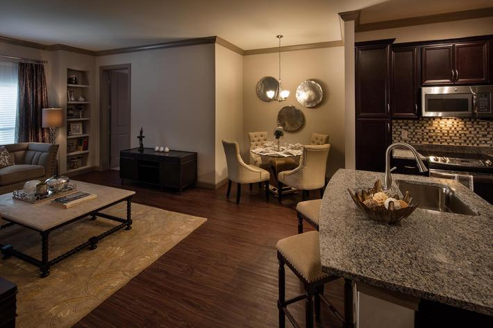 The Orion Apartments in Central West End - St. Louis, MO - Interior 04.jpg