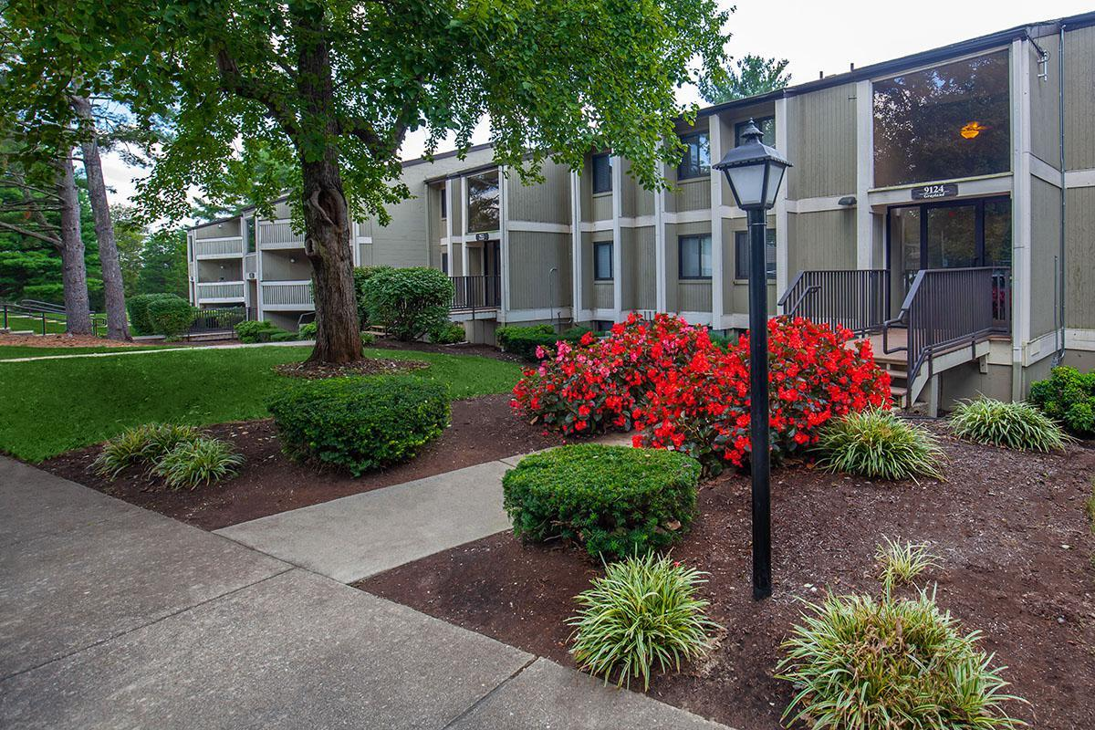 Common Area at Brendon Park Apartments