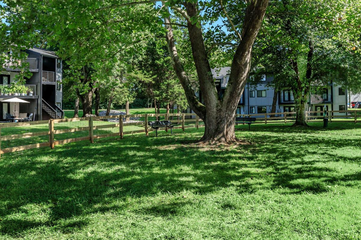 Luxurious Landscaping for you to Enjoy In Knoxville, TN