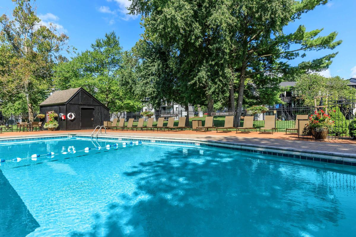 Relax Beside our Sparkling Swimming Pools at Brendon Park Apartments