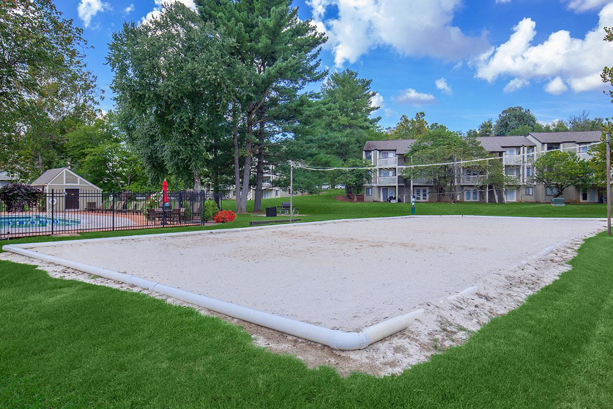 Sand Volleyball Court at Brendon Park Apartments