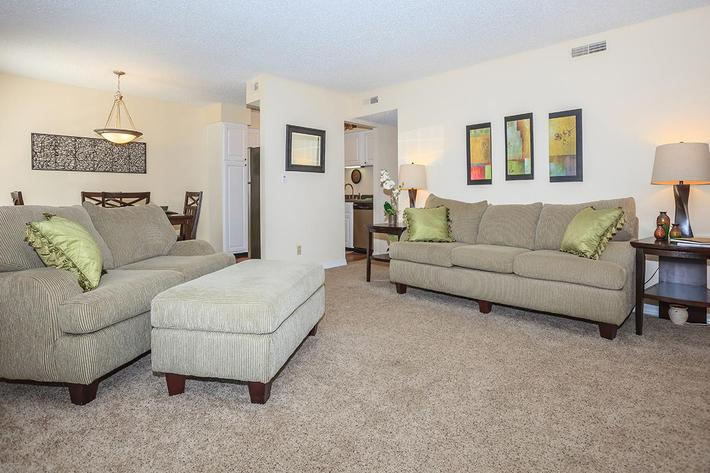 Apartment Living Room in Knoxville Area
