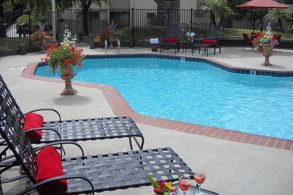 Pic 4 pool.jpg