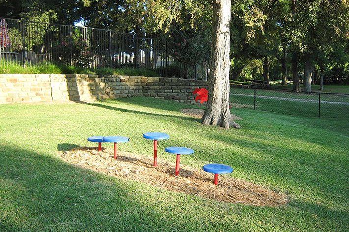 Bark Park 1.jpg