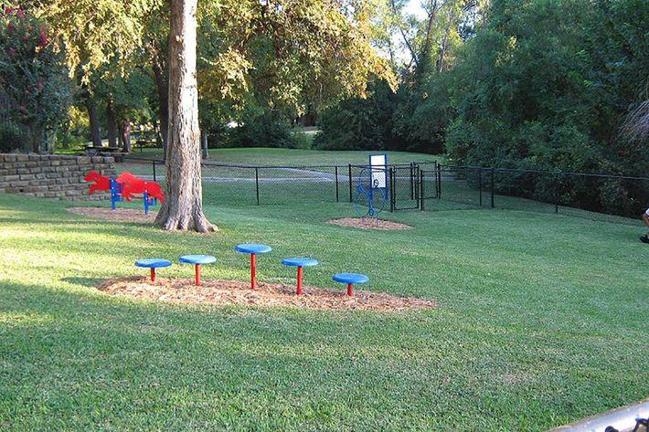 Bark Park 13.jpg