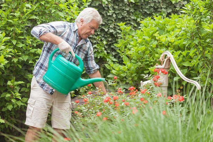 Lifestyle photo of man gardening