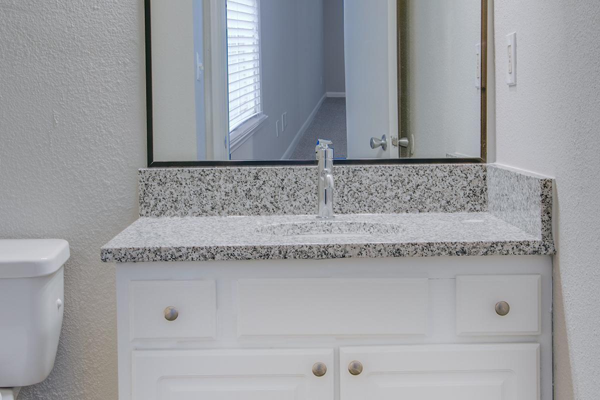 CHIC GRANITE COUNTERTOPS IN BATHROOM