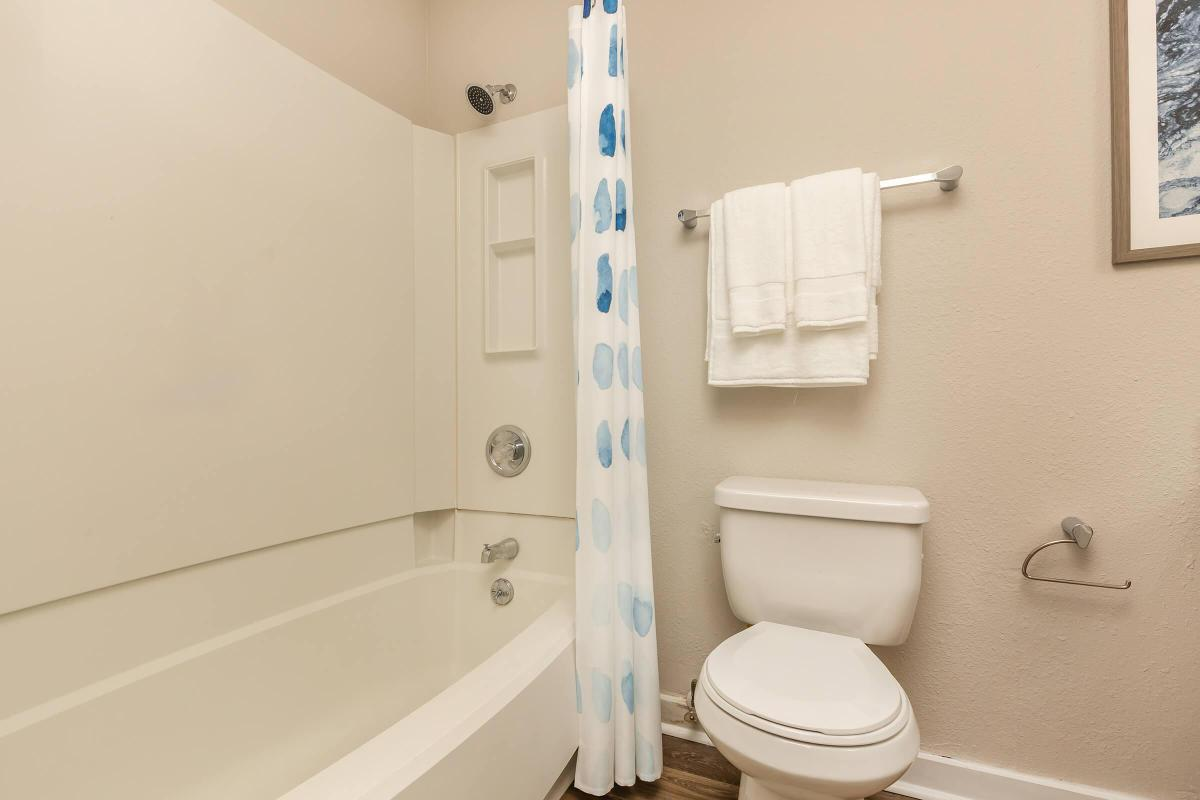 STAY CLEAN IN PRISTINE BATHROOM