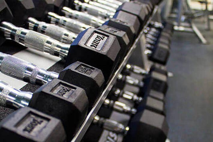 weights 4.jpg