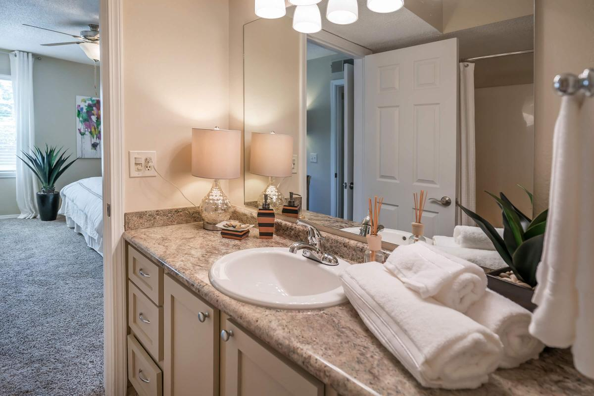 Luxurious Bathrooms at South Wind Apartment Homes