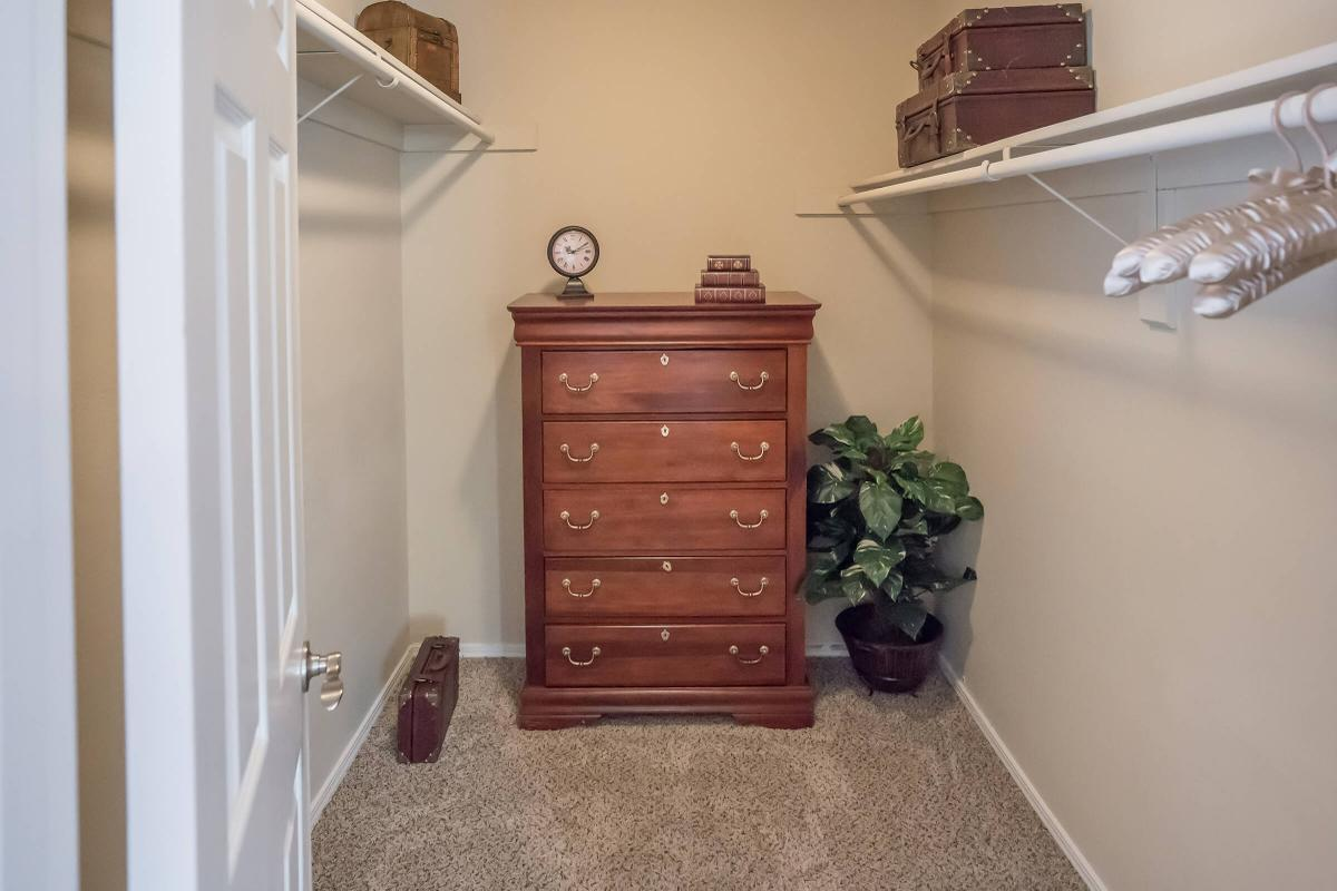 Spacious Walk-in Closets at South Wind Apartment Homes in Franklin
