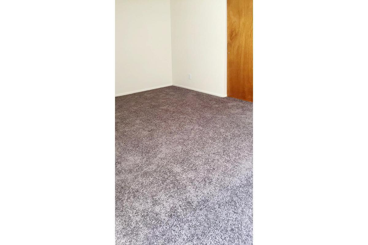 Brand new beautiful grey carpet.JPG