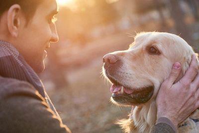 amenities-dog-park1.jpg