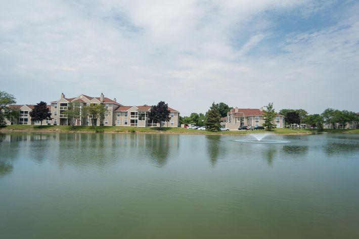 pond2_1719_hi.jpg