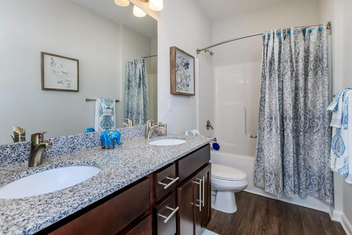 Spacious Bathrooms At Riverstone Apartments AT Long Shoals