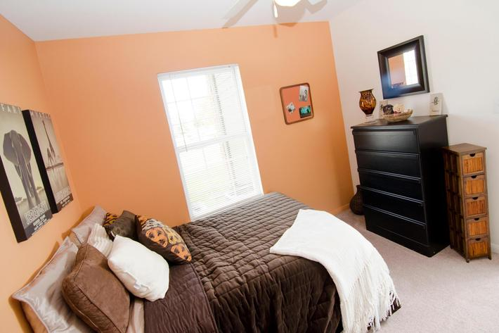 05-08-2012_College_Towne_Bed_2.jpg