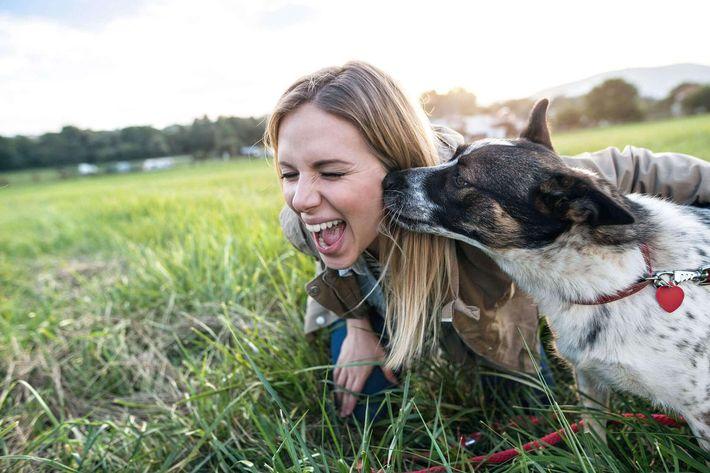 Dog-&-woman---iStock-629740534.jpg