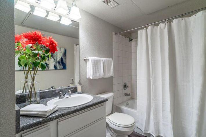 Wendy Rae Walker - bathroom.jpg