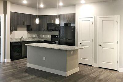 B1 Kitchen with dark cabinets.jpg