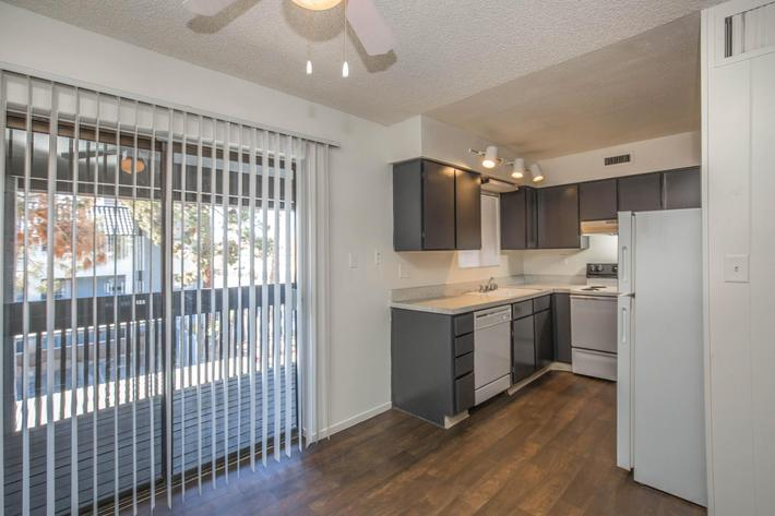 Vertical Blinds in the one bed one bath at Las Palmas