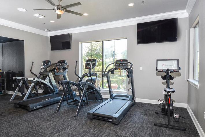 The Vineyards Apartments in Frisco, TX - Fitness Center 01.jpg