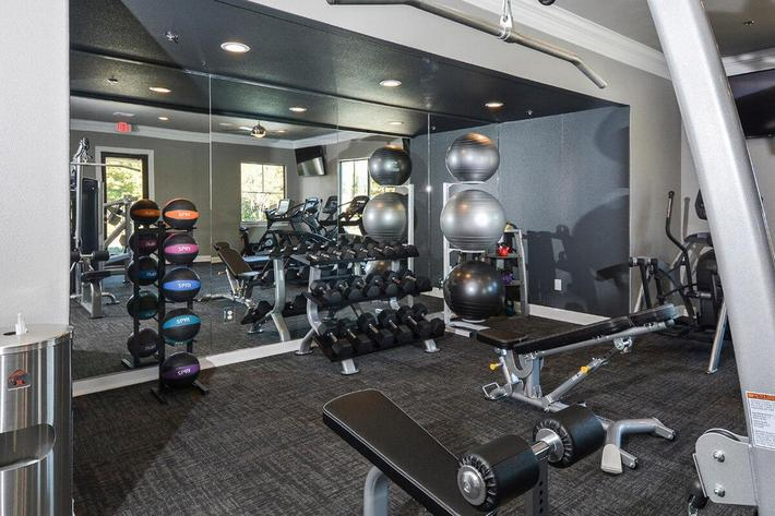 The Vineyards Apartments in Frisco, TX - Fitness Center 02.jpg