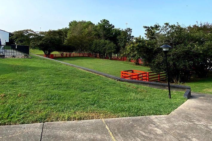 Dog Park at Innovation Flats