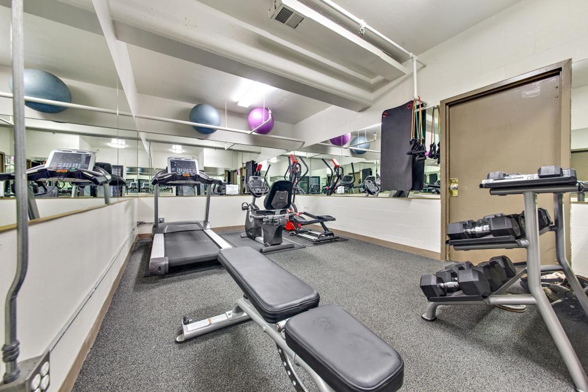d gym.jpg