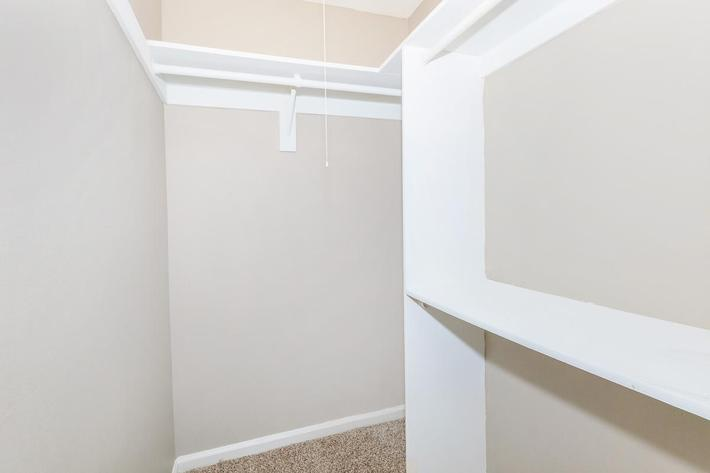 1 bed 1 bath walk-in closet at Ansley at Harts Road in Jacksonville, Florida