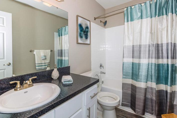 2 bed 1 bath sleek bathroom at Ansley at Harts Road in Jacksonville, Florida
