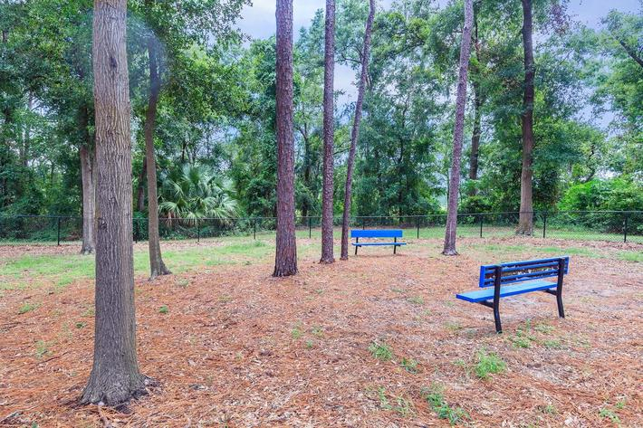 Enjoy nature here at Ansley at Harts Road in Jacksonville, Florida
