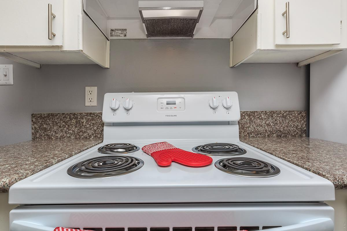 ELECTRIC STOVE/OVEN AT SKYLINE PARC IN LAS VEGAS, NEVADA