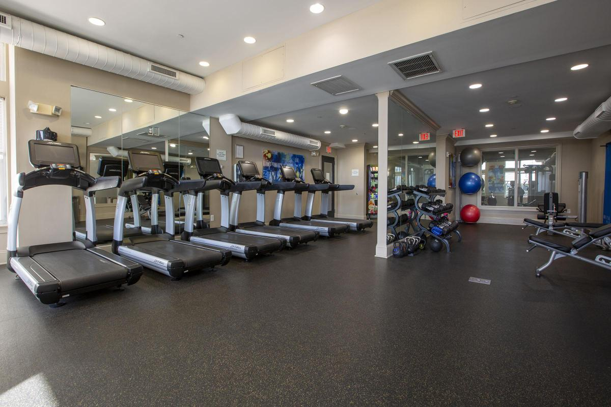 STATE-OF-THE-ART FITNESS CENTER WITH CARDIO EQUIPMENT