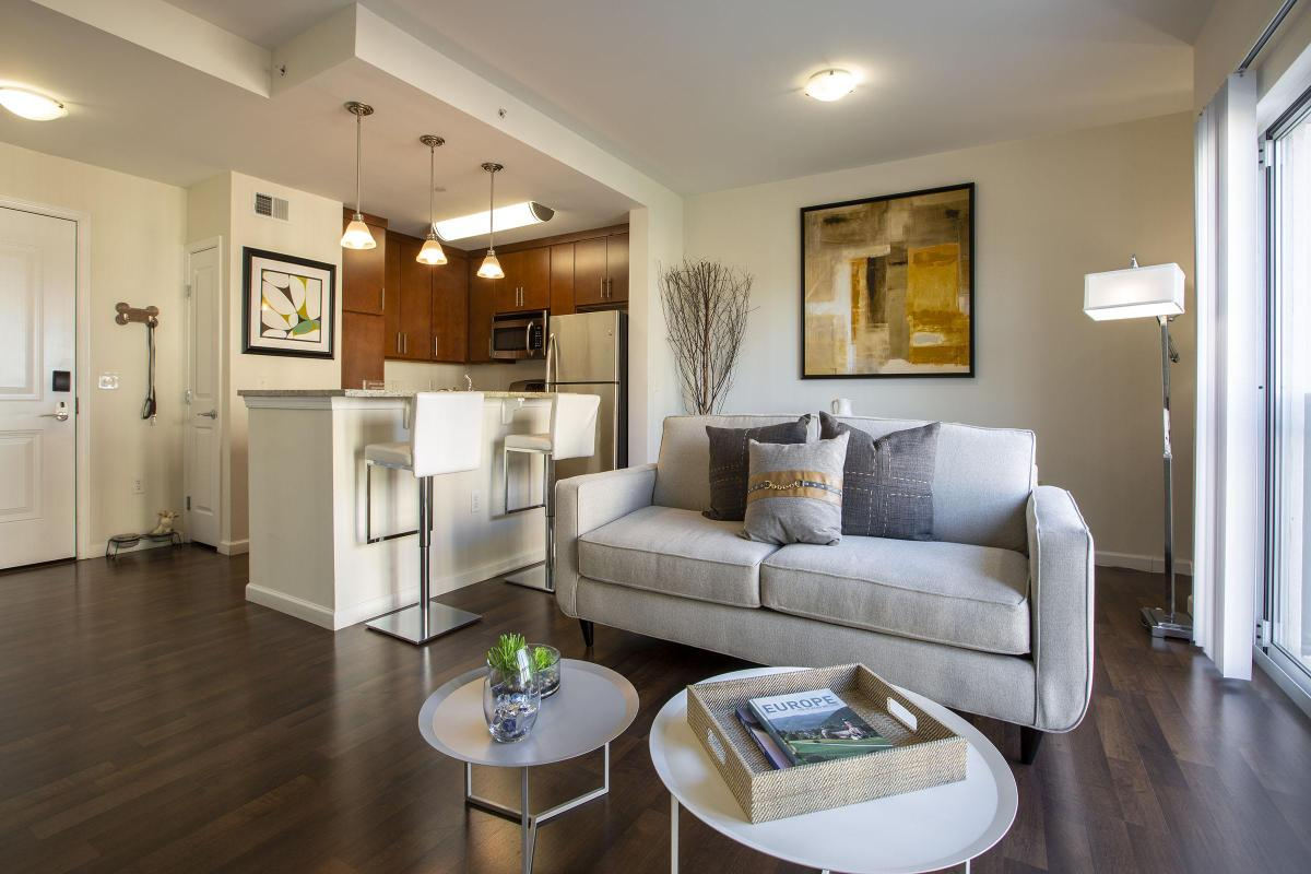 STUNNING HARDWOOD FLOORS IN APARTMENTS FOR RENT