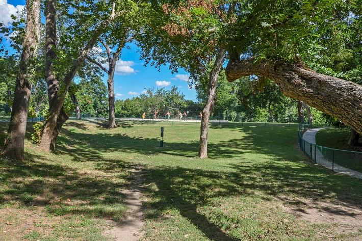 Westshore Colony Apartments in New Braunfels, TX - Dog Park 02.jpg