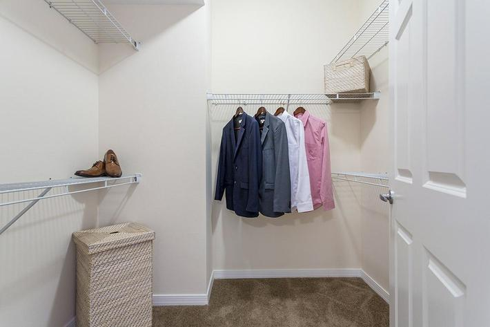 Closet at The View at Horizon Ridge in Henderson, Nevada