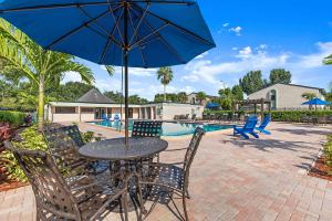 Dive Into Our Shimmering Swimming Pool At the Oasis at Bayside in Largo, Florida