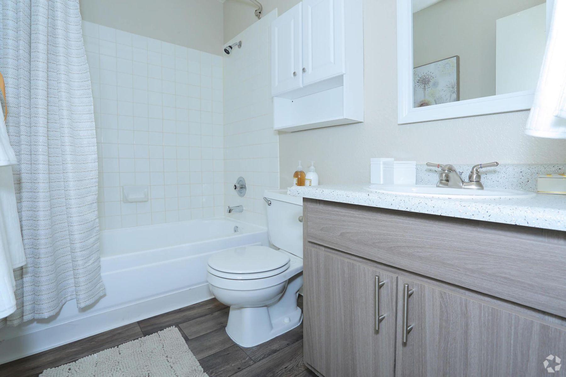 sunset-hills-apartments-henderson-nv-2br-2ba---960-sf-master-bathroom.jpg