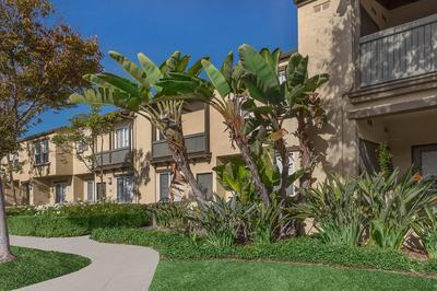 Laurel Canyon Apartment Homes Ebrochure