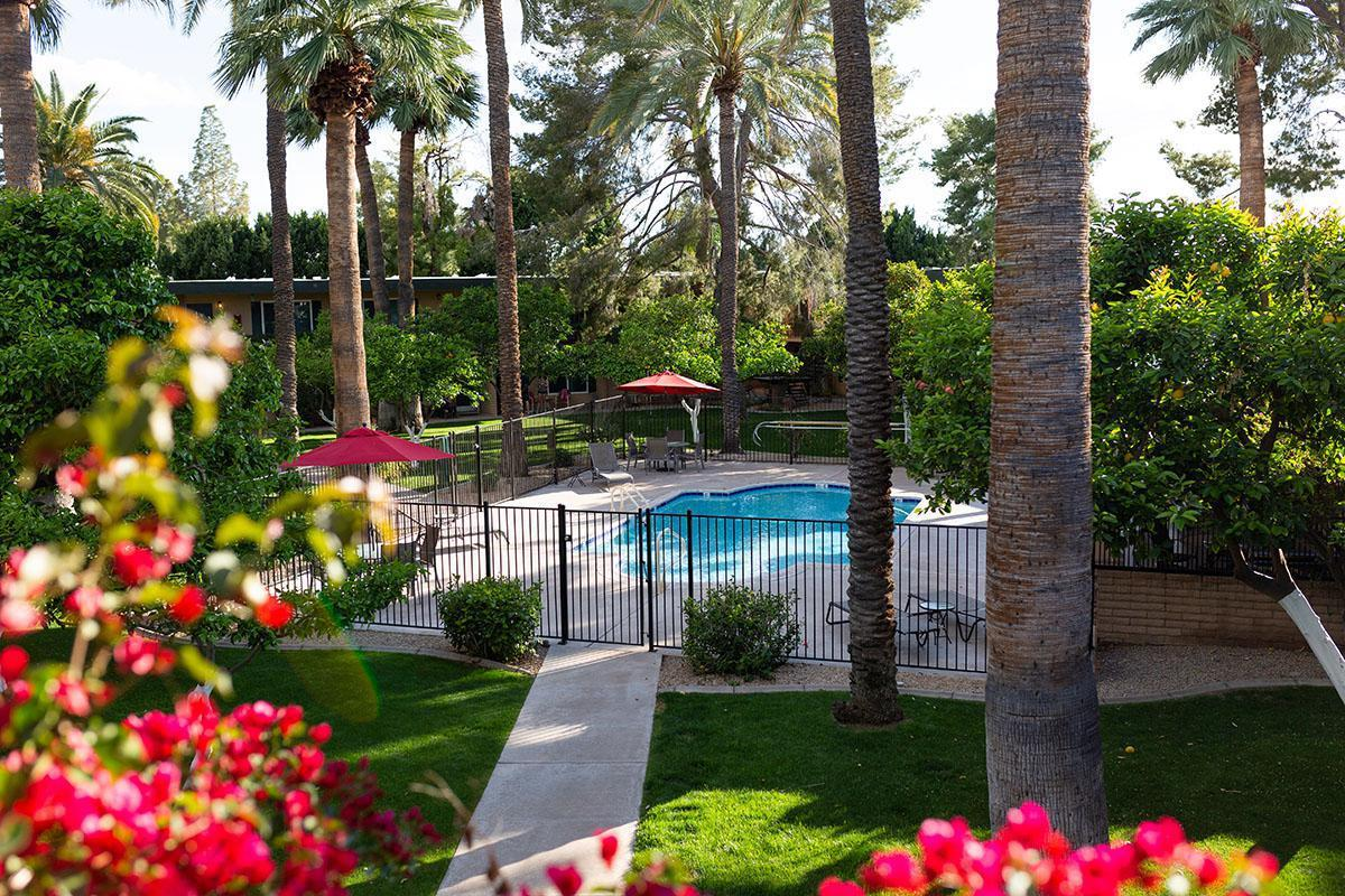 oasis 2-35.jpg