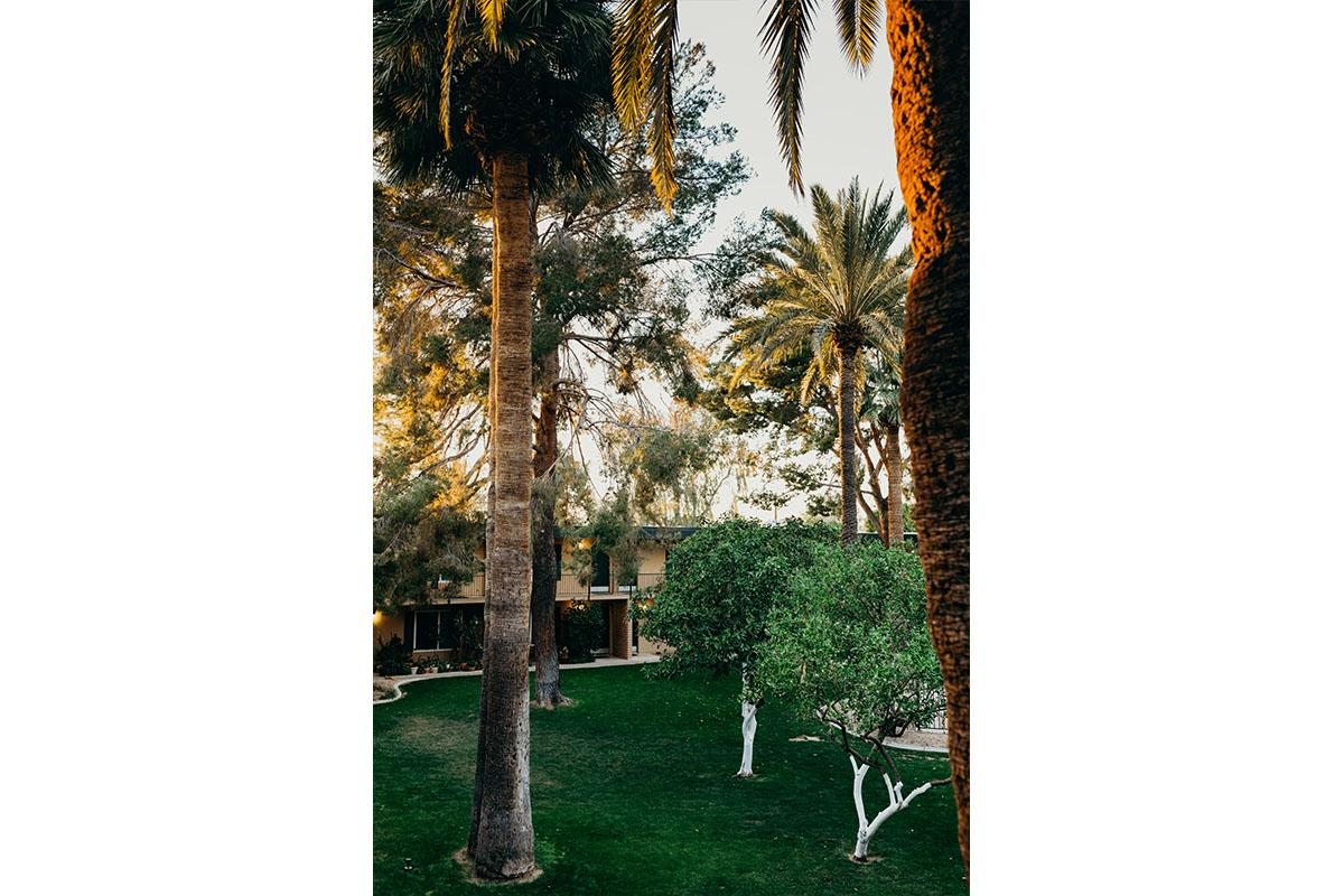 oasis-35.jpg