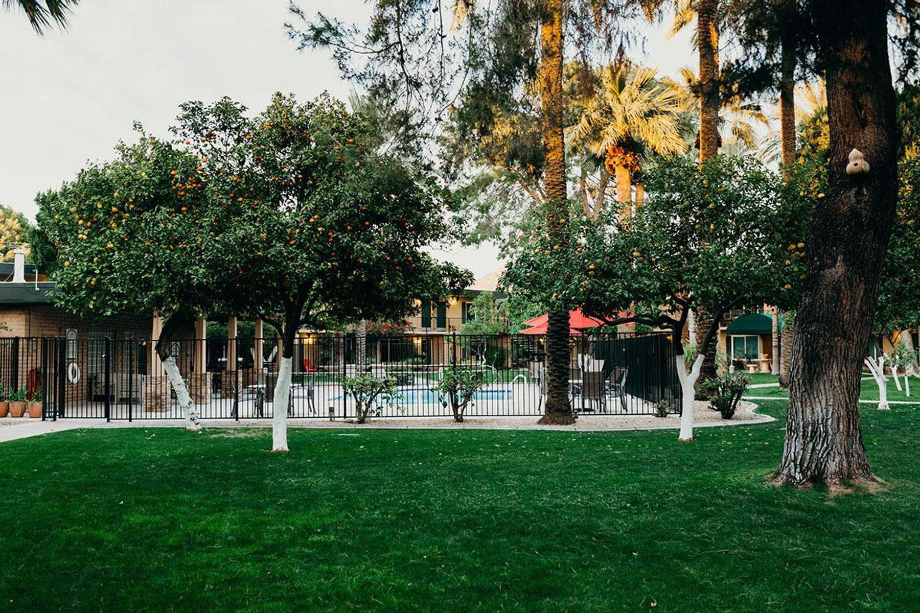 oasis-41.jpg