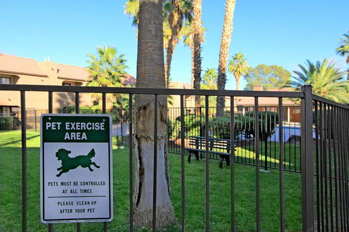 Laurel Park Apartments offers your pets a Dog Park