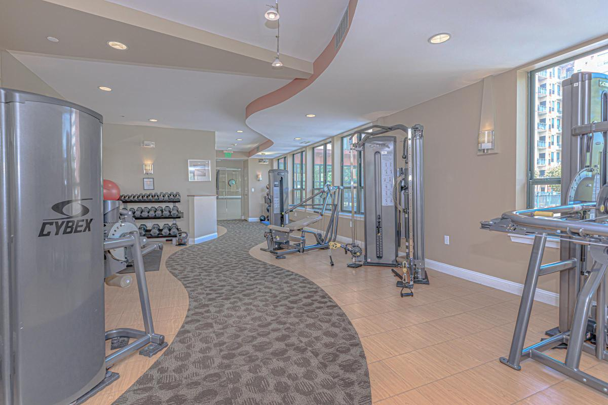 STAY HEALTHY IN OUR FITNESS AREA