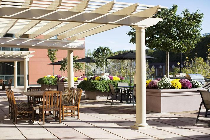 Courtyard Pergula table.jpg
