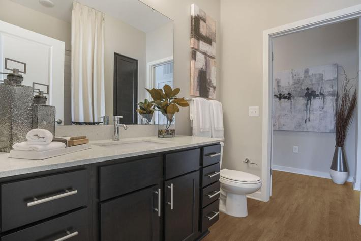 PROSPERITY-VILLAGE-APARTMENTS-CHARLOTTE-NC-2-BED-MODEL-BATHROOM-01.jpg
